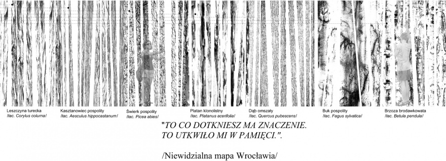 """Access for All"" Dyplom Roku 2008 SARP WROCŁAW II nagroda"